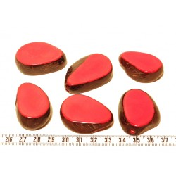 Tagua tranche rouge x1