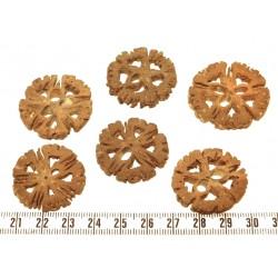 Coco demi cercle 38mm marron x1