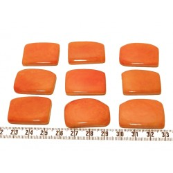 Tagua plaque orange