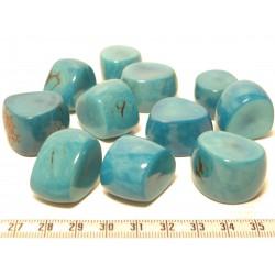 Tagua tronçon bleu