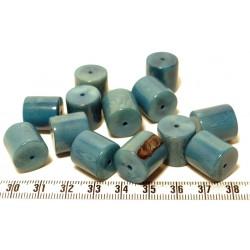 Tagua cylindre bleu x1