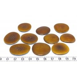 Tagua lame moyenne marron