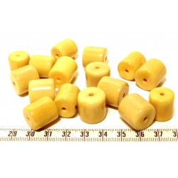 Tagua cylindre jaune x1