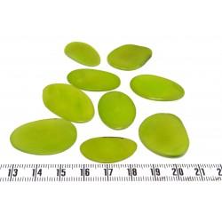 Tagua pétale grande vert