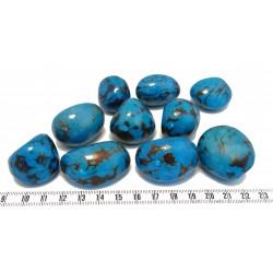 Tagua graine marbrée bleu