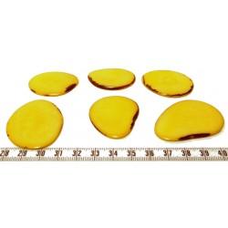 Tagua lame grande jaune x1