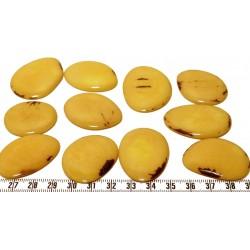 Tagua lame marbrée moyenne jaune x1
