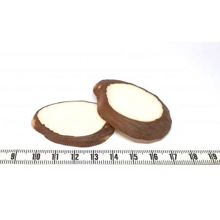 Tagua белый x малые толстые лезвия 1