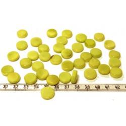 Tagua disque 13mm vert x1