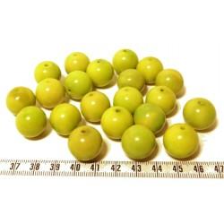 Tagua perle 15mm vert x1