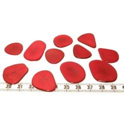 Tagua pétale rouge x1