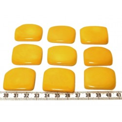 Tagua plaque jaune x1