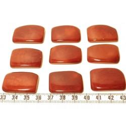 Tagua plaque marron x1