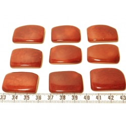 Tagua plaque marron x1