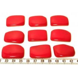 Tagua plaque rouge x1