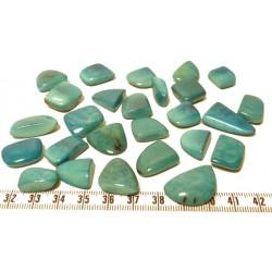 Tagua rocaille grand bleu x1