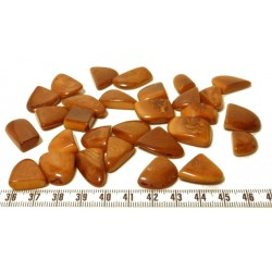 Tagua rocaille grand marron x1