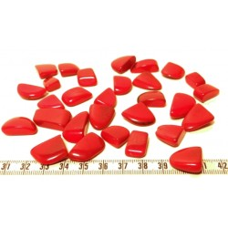 Tagua rocaille grand rouge x1